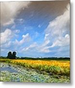 Wide Country Metal Print