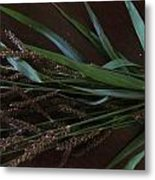 Wild Brown Grass Metal Print