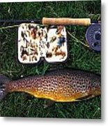 Wild Brown Trout And Fishing Rod Metal Print