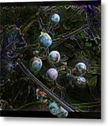 Wild Grapes Abstracted Metal Print
