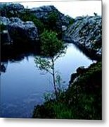 Wild Nature In Norway Metal Print