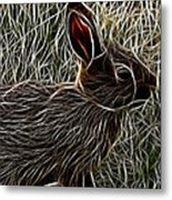 Wild Rabbit Metal Print
