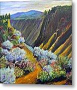 Wild Rivers New Mexico Metal Print