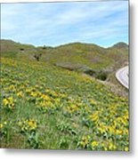 Wild Sunflowers 2 Metal Print