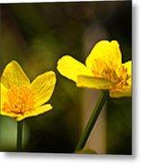 Wild Yellows Metal Print