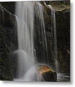 Wildcat Falls Yosemite National Park Metal Print