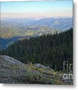 Wilderness View Metal Print