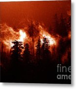 Wildfire Metal Print