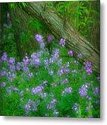 Wildflower Dreams Metal Print