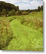 Wildflower Field Morning Metal Print