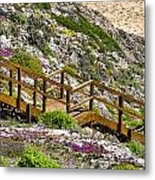 Wildflower Steps Metal Print