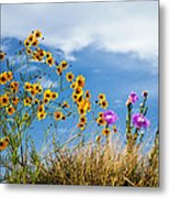 Wildflower Weed Metal Print