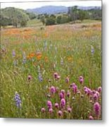 Wildflower Wonderland 6 Metal Print