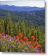 Wildflowers And Mountaintop View Metal Print by Ellen Thane and Photo Researchers