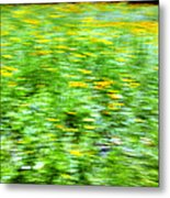 Wildflowers And Wind 2 Metal Print by Skip Nall