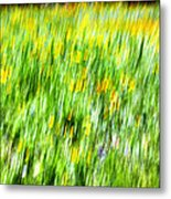 Wildflowers And Wind Metal Print