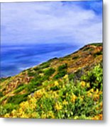 Wildflowers At Point Loma Metal Print