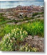 Wildflowers In Badlands Metal Print