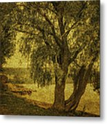 Willow At The Lake. Golden Green Series Metal Print by Jenny Rainbow