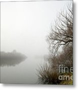 Willow In Fog Metal Print by David Lade