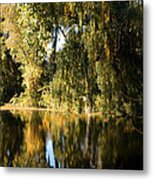 Willow Mirror Metal Print