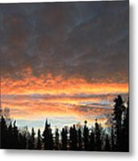 Willow Sunrise Metal Print