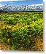 Wind River Range In West Central Wyoming - 03 Metal Print