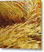 Windblown Grass Metal Print