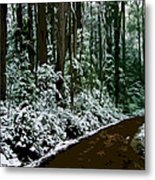 Winding Forest Trail In Winter Snow Metal Print