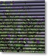 Window Blinds Prints Metal Print