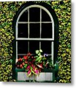 Window On An Ivy Covered Wall Metal Print