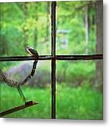 Window Pain Metal Print