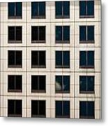 Window Washer Metal Print