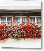 Windows With Red Flowers Metal Print