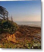 Windswept Coast Metal Print
