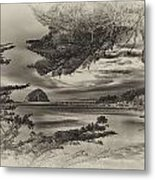 Windy Cove Bw Metal Print