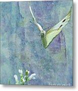 Winging It Metal Print by Betty LaRue
