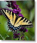 Wings Of Hope Metal Print