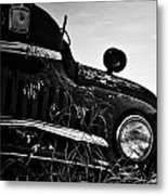 Wink From The Field Metal Print