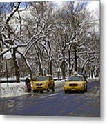 Winter - 2011 Metal Print