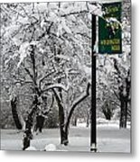Winter 0003 Metal Print