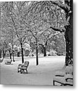 Winter 0004 Metal Print