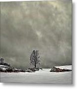 Winter Blues Metal Print