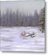 Winter Calm Metal Print