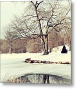 Winter Day In The Park Metal Print