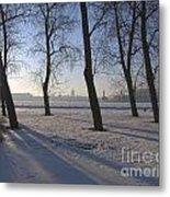 winter forest Peterburg Metal Print