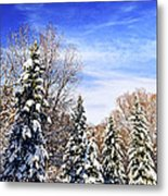 Winter Forest Under Snow Metal Print by Elena Elisseeva