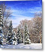 Winter Forest With Snow Metal Print