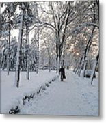 Winter In Mako Metal Print