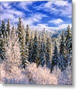 Winter In The Rockies Metal Print